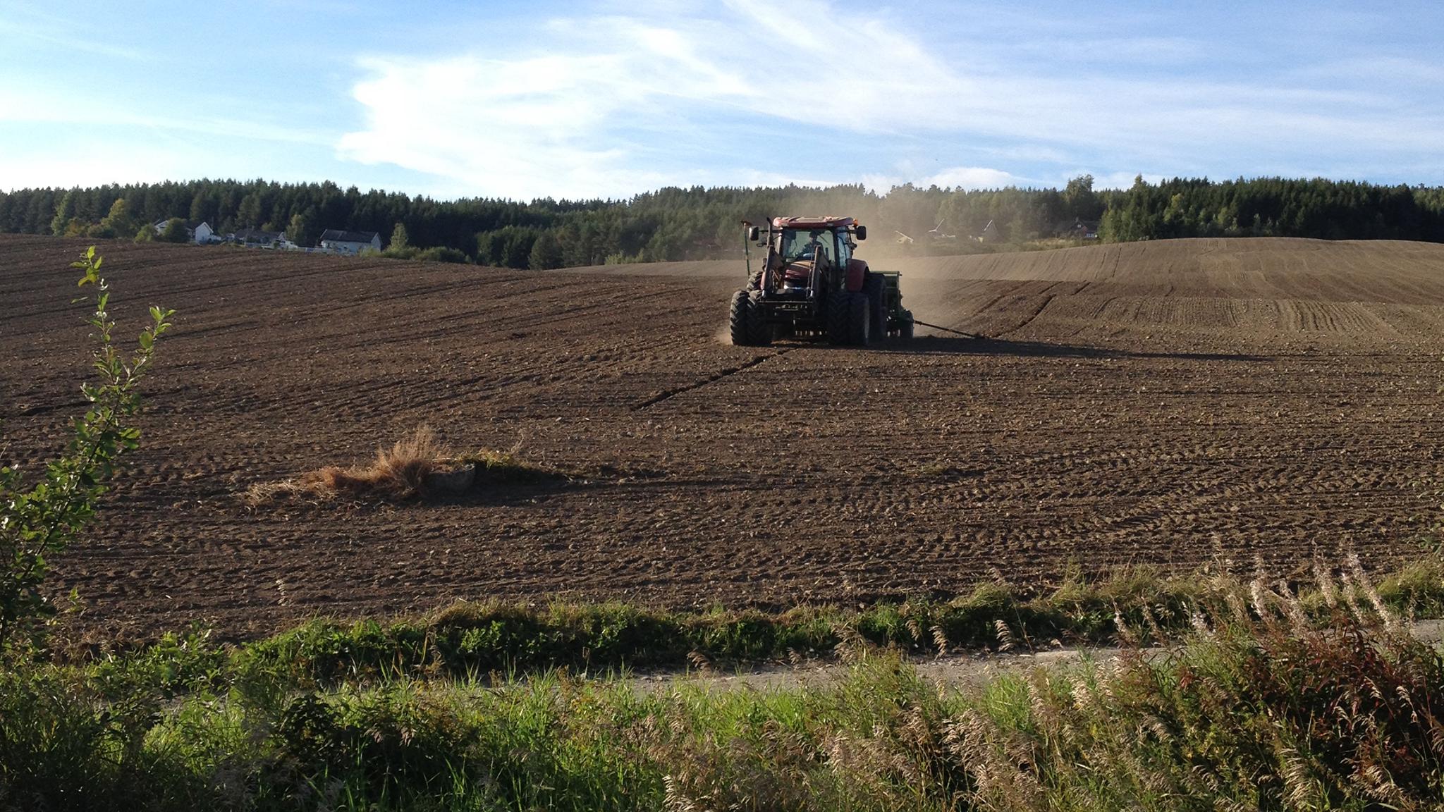 Krever tiltak for å sikre sesongarbeidere til landbruket